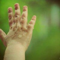 Капли дождя на детской руке :: Светлана Бабенкова