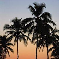 Закат в Индийском океане :: Сергей Рычков
