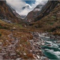 Мы в такие шагали дали,что не очень-то и дойдешь...Гималаи,Непал! :: Александр Вивчарик