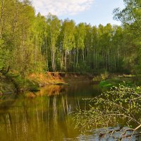 На берегу очень тихой реки :: Владимир