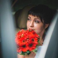Ярослав&Надежда :: Илья Земитс