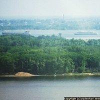 Зелёный остров, лиман Тарханка, Волга, Саратов :: Юрий А. Денисов