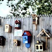 Дома для птиц. :: Ксюша MF