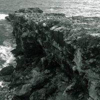 На берегу Атлантики :: Наталья Кузнецова