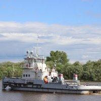 на берегу реки :: Мария Соколова