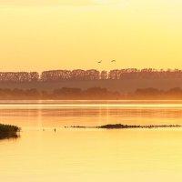 Озеро на закате :: Михаил Ермаков