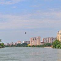 у моста :: Алексей Меринов