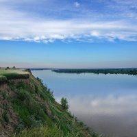 На высоком берегу. Обь-река :: Виктор Четошников
