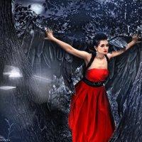 Ангельские крылья :: Екатерина Казачухина