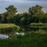 Вечер на реке :: Николай Климович