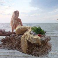 Такая вот история была отснята сегодня... )) :: Райская птица Бородина