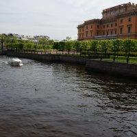Прогулки по Санкт-Петербургу.... :: Алёна Савина
