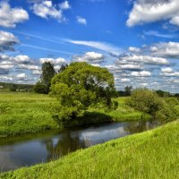 Дерево над рекой :: Олег Чернов