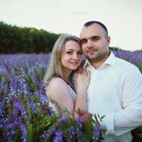 Сиреневое лето :: Татьяна Михайлова