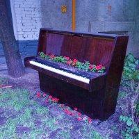 Ещё один способ использования пианино... :: Galina194701