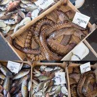 Рыбный рынок :: Таня Фиалка