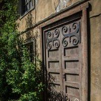 Дверь :: Elena Ignatova