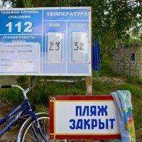Так закрыт или все-таки купаться можно? :: Светлана Игнатьева