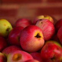 Сочные яблочки :: Яна Кононенко