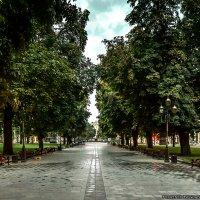 Львовский сквер :: Богдан Петренко