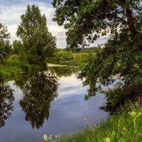 Жара, июнь! :: Андрей Дворников