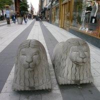 Когда львы улыбаются... :: Алёна Савина