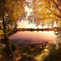 Теплое летнее утро на реке :: Максим Иванов