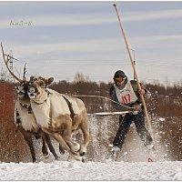 Как снежный буран... :: Кай-8 (Ярослав) Забелин