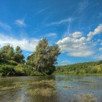 В полдень на реке Осетр :: Nikita Volkov