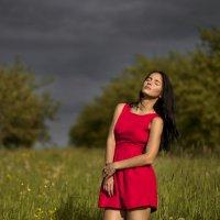 Перед грозой :: Женя Рыжов