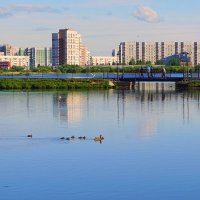 Июнь на озере :: Елена Перевозникова