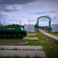 Парк Победы в Пуровске. :: Лариса Красноперова