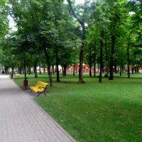 Прогулка в летнем парке... :: Тамара (st.tamara)