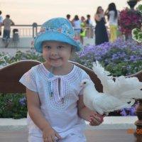 Ручной голубь :: Юлия Ланина