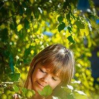 Зелёные яблочки :: Елена Оберник