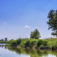 Река. :: Дмитрий Санников