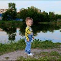 Вечер у пруда. :: Anatol Livtsov