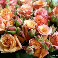 дарите женщинам цветы :: Олег Лукьянов