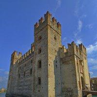 Замок и лебедь :: M Marikfoto