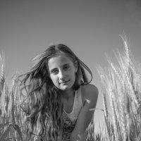 Полевой ветер :: Анна Никонорова