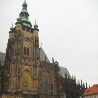 Прага :: Роза Троянская