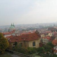 Пражский град :: Роза Троянская