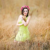 ♥ Анютка в поле с колосками ♥ :: Alex Lipchansky
