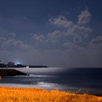 Ночной залив :: Valeri Lubiako