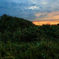 Закат в стогу сена :: Zifa Dimitrieva