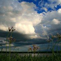У озера :: Евгений Юрков