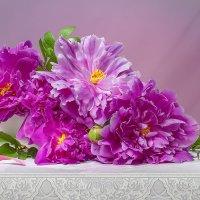Розовые пионы :: Светлана Л.