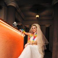 Одинокая Невеста :: Денис Красненко