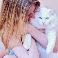 Hug your cat. :: Valentina Severinova