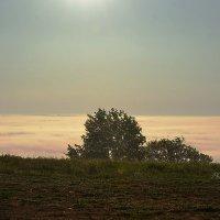 Когда штормит туман :: Валерий Лазарев